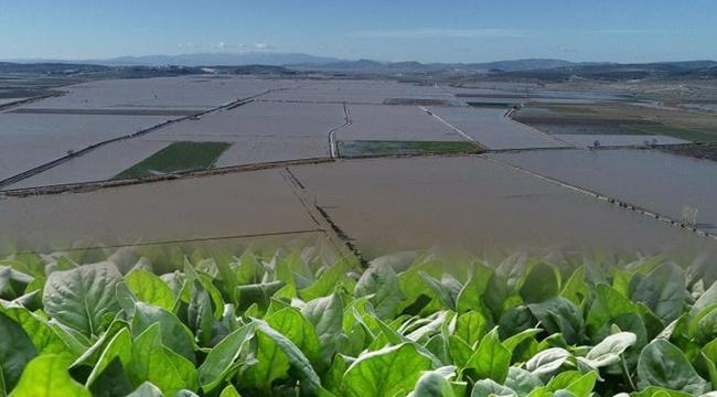 Hortum ve Aşırı Yağışlar  Çiftçileri Vurdu