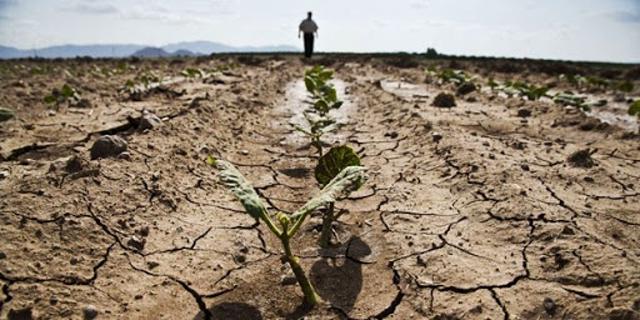 İklim Değişikliği Tarımın Doğal Dengesini Derinden Etkiledi