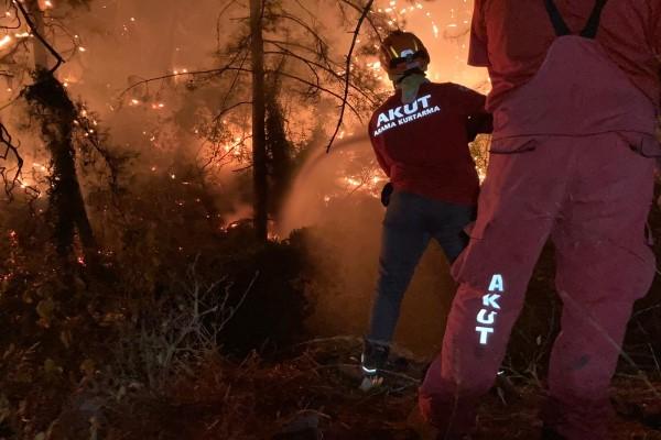 Mersin, Marmaris, Bodrum ve Manavgat'taki Orman Yangınları