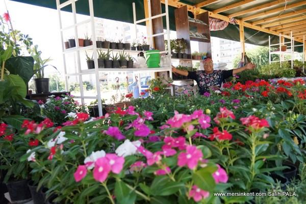 Mersin'in Sıradışı Rengarenk Çiçek Pazarı
