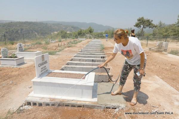 Mezitli Hayvan Mezarlığına Hayvan Hakları Federasyonundan Ziyaret